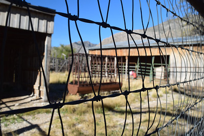 Frijole Ranch | Guadalupe Mountains NP