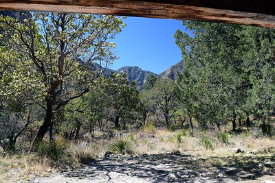 Pratt Cabin | Guadalupe Mountains NP