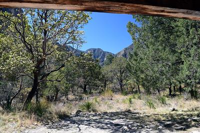 Pratt Cabin | Guadalupe Mountains NP