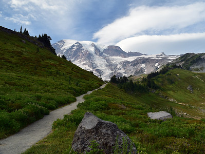 Alta Vista Trail | Mount Rainier