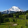 """""""The View""""   Mount Rainier National Park"""