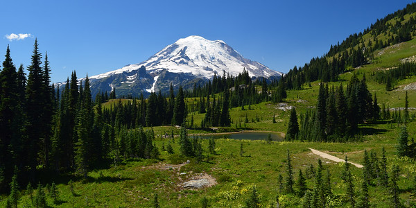 """Majesty"" 