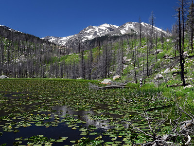 Cub Lake   Rocky Mountain National Park