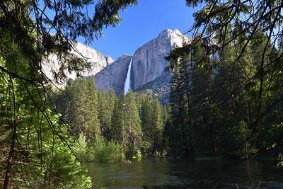 Yosemite Falls   Yosemite National Park