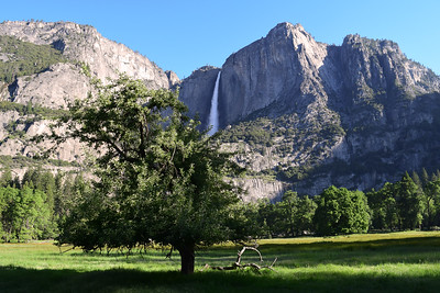 Yosemite Falls | Yosemite National Park