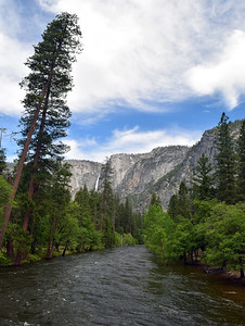 Merced River | Yosemite National Park