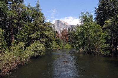 Merced River & Half Dome   Yosemite National Park
