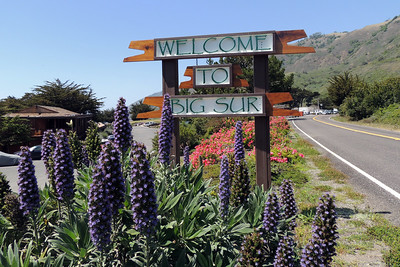 Welcome To Big Sur | Ragged Point Inn