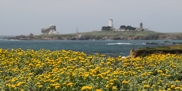 Piedras Blancas Light Station | California Coast