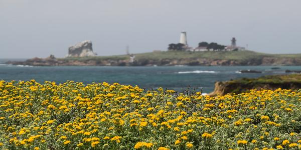 Piedras Blancas Light Station | California Coast