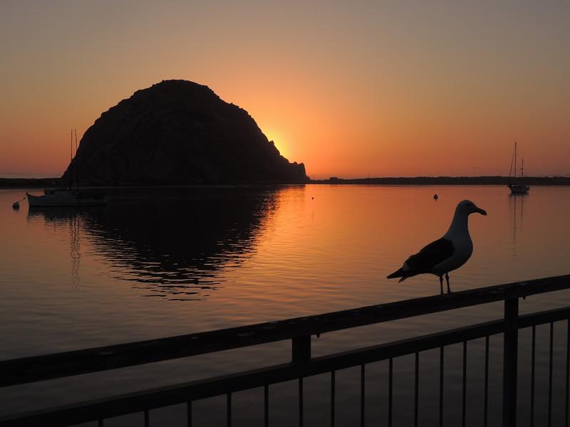 Morro Rock Sunset | Morro Bay, CA