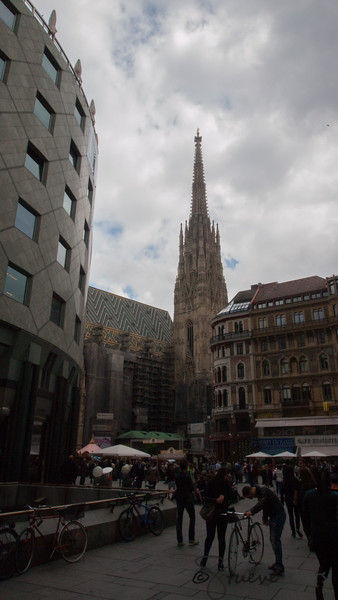 The Sight of St. Stephens Cathedral