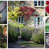 On the Edge of the Cotswolds, in a Very Small Village, We Find Idyllic England