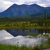Destruction Highway<br /> Yukon Territory, Canada