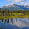 Mentasta Lake<br /> South of Tok, Alaska