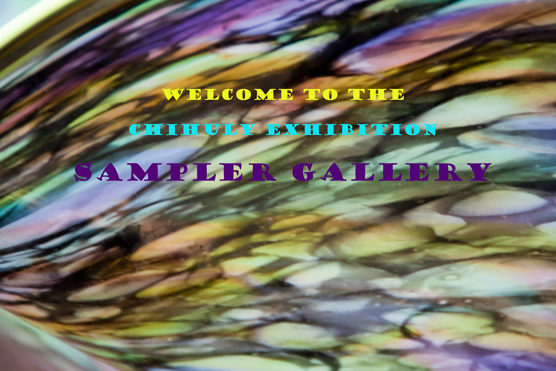 Welcome frame for the Chihuly sampler gallery