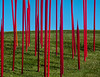 Red Reeds, 2010.  <br /> Glass.  <br /> I liked the abstract nature of  this view.  It includes the all important landscape, and shadows, but in an unobtrusive way.<br /> <br /> Dale Chihuly, artist.<br /> <br /> Frederik Meijer Gardens and Sculpture Park,<br /> Grand Rapids, Michigan.<br /> October 7, 2010.