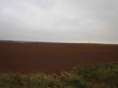 Towton Battlefield (1461)