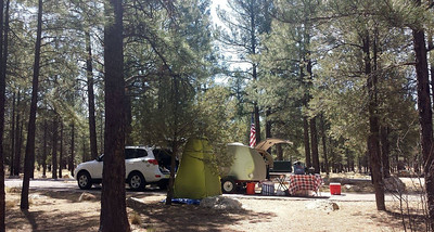Our camp site at Ten X Campground. We actually like this campground better than Mather Campground