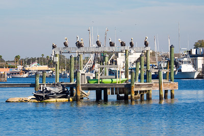 Tarpon Springs, FL      Inlet and Docks