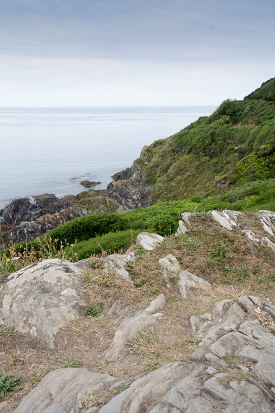 Polperro cliff walk