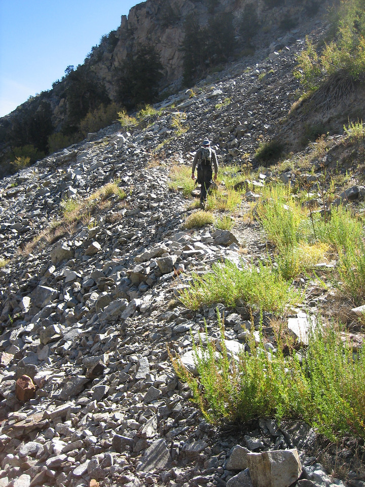 You can still follow a good portion of the mining road up to the Wasatch.