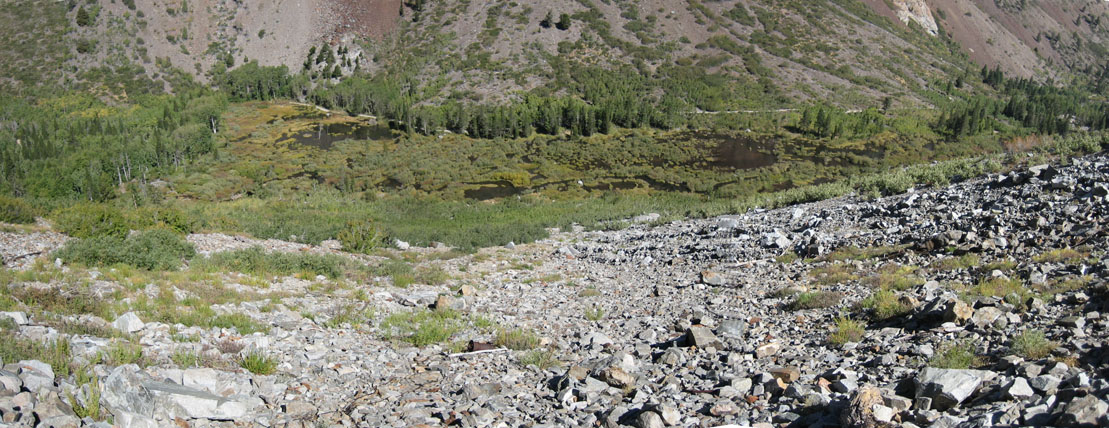 We begin our hike up to the Wasatch Mine. Looking down on the beaver ponds above Lundy.
