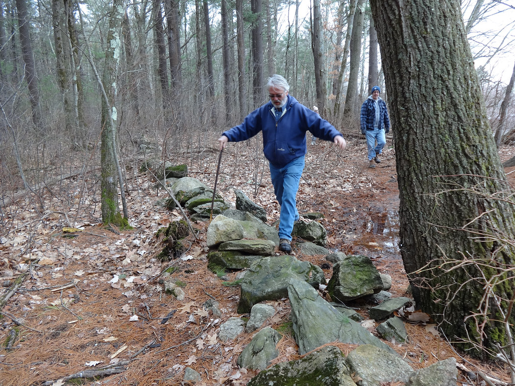 . Bruce Bailey of Hudson, NH, carefully stepped over a stone wall. Photo by Mary Leach