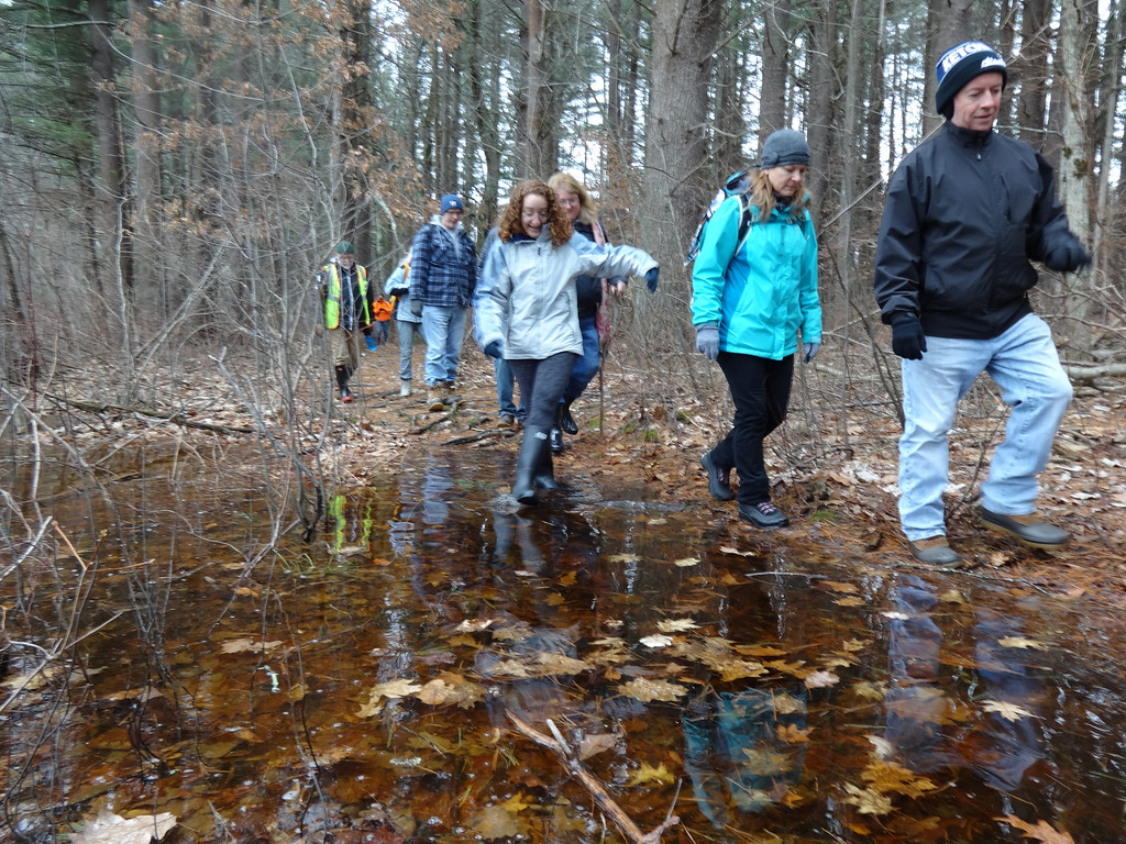 . Cathy Hertler of Billerica (wearing light blue) seemed to enjoy playing in a puddle as she stepped out of the row of hikers lining the trail. Photo by Mary Leach
