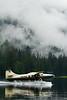 Floatplane, Neets Bay, Alaska.  July 2011