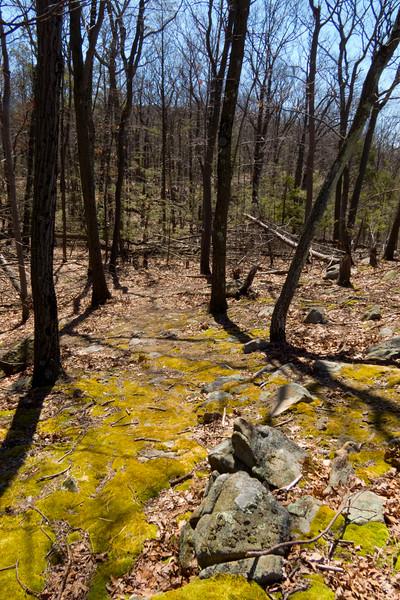 Hike along Greenwood Lake, New York.  April 2015