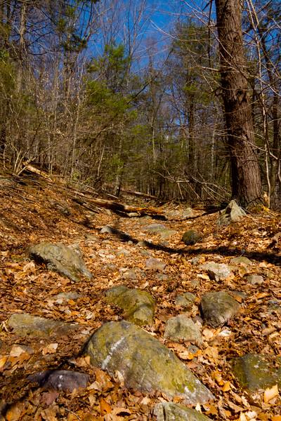 Hike to Beaver Ponds, New York.  April 2015