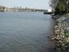 Spring in Augusta, Riverwalk, 3/22