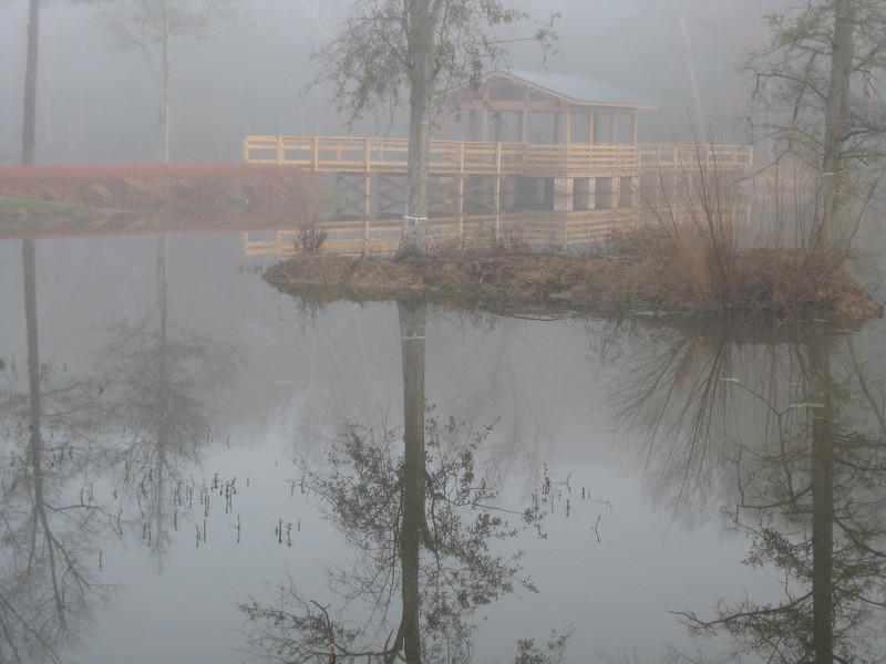 Brick Pond Park. Foggy North Augusta, 01/05/2009