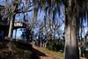 Savannah Rapids Park, 2/20/10