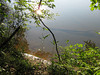 Photo hike along the Chattahoochee Recreation Area, June 6, 2011