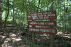 Entrance to the yellow trail, which I didn't take (at first). Sweetwater Creek State Park, 07/29/2012