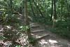 Side trail along Sweetwater Creek. Sweetwater Creek State Park, 07/29/2012