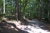 Red trail. Sweetwater Creek State Park, 07/29/2012