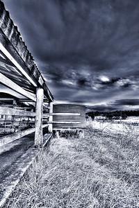 Bottom paddock