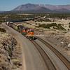 Freight Train, Arizona