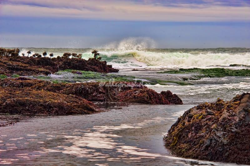 Pillar Point, California