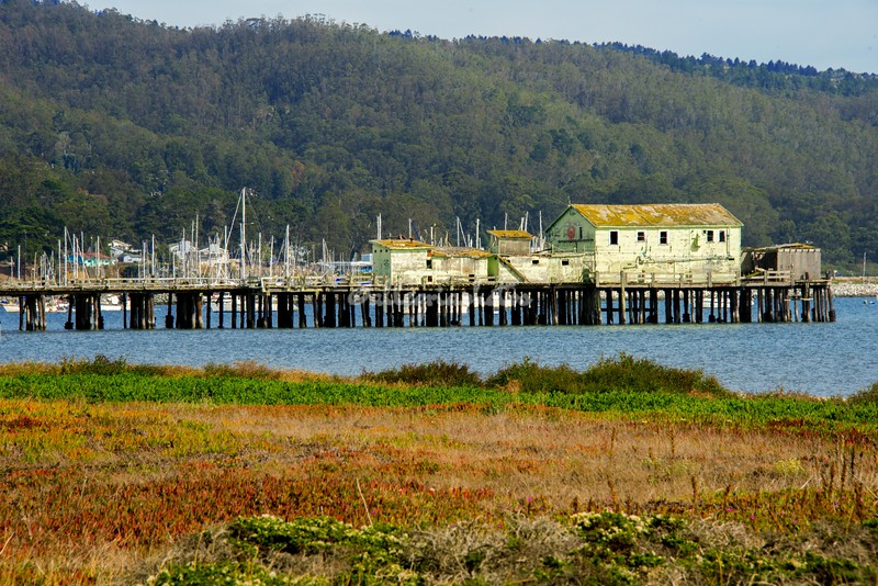 The wharf at Pillar Point, Half Moon Bay