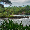 Onomea Bay and Hawaiin Tropical Botanical Garden