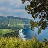 Waipio Valley from the overlook