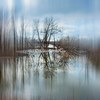 Diffused reflections on Gilbert lake, Grafton