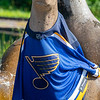 """""""Seal'ing the Victory"""". Celebrating the St Louis Blues victory in the Stanley Cup 2019. A Blues jersey draped over a sculpture of a seal at St Louis Zoo."""