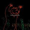 "Bear,  ""Wild Lights"", St Louis Zoo"