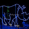 Rhino, Wild Lights, St Louis Zoo