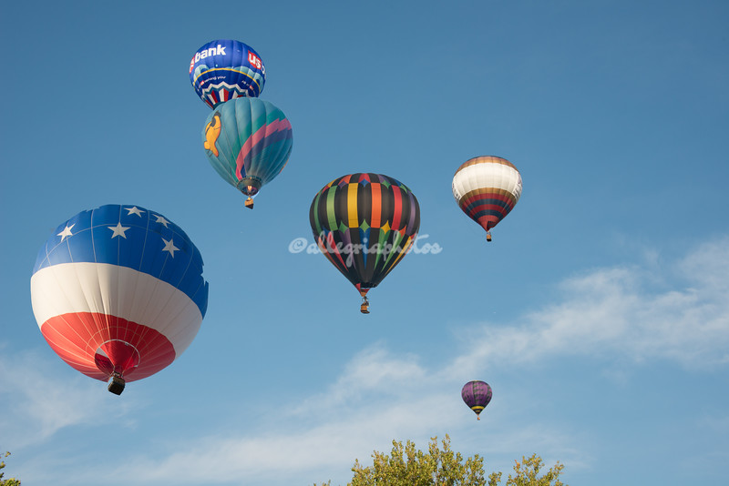 Hot Air Balloon Race composite